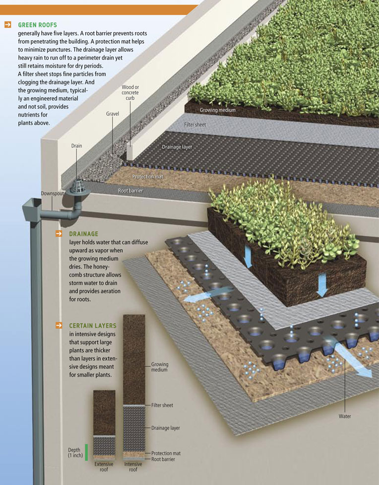 design shop on pinterest retaining walls green roofs. Black Bedroom Furniture Sets. Home Design Ideas