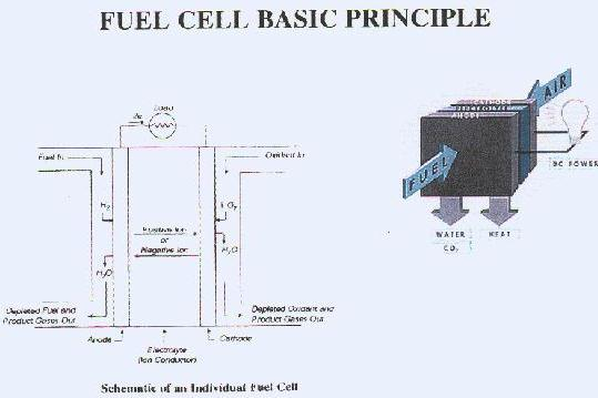 FUEL CELLS: STATUS AND PERSPECTIVES